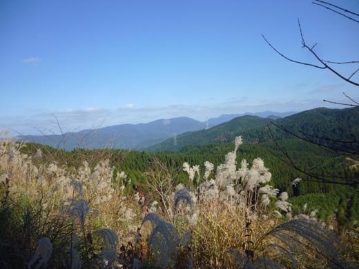2012.11.21-sya5.JPG