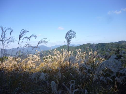 2012.11.21-sya6.JPG