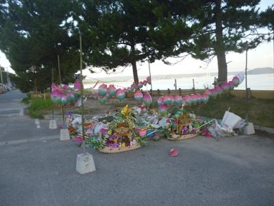2012.8.16-sa4.JPG