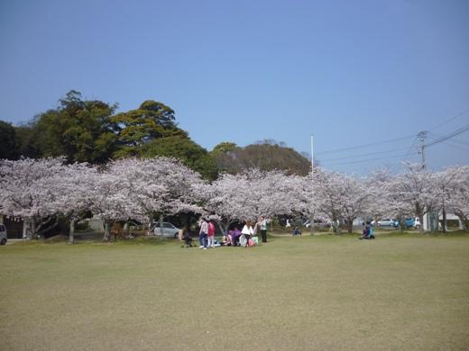 2013.3.26-sya2.JPG