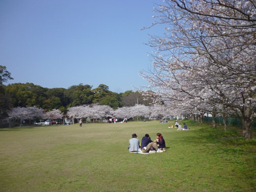 2013.3.26-sya3.JPG