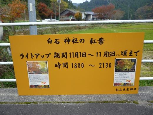 P1070534.JPG