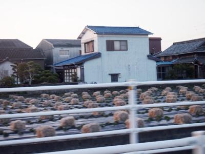 yakuinpj2014.3.1111.JPG